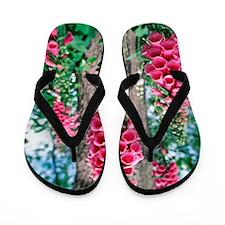 Foxglove flowers Flip Flops