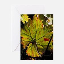 Giant rhubarb leaf Greeting Card