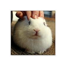 "January - Bunny Bliss Square Sticker 3"" x 3"""
