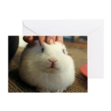 January - Bunny Bliss Greeting Card
