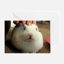 January - Bunny Bliss Greeting Card
