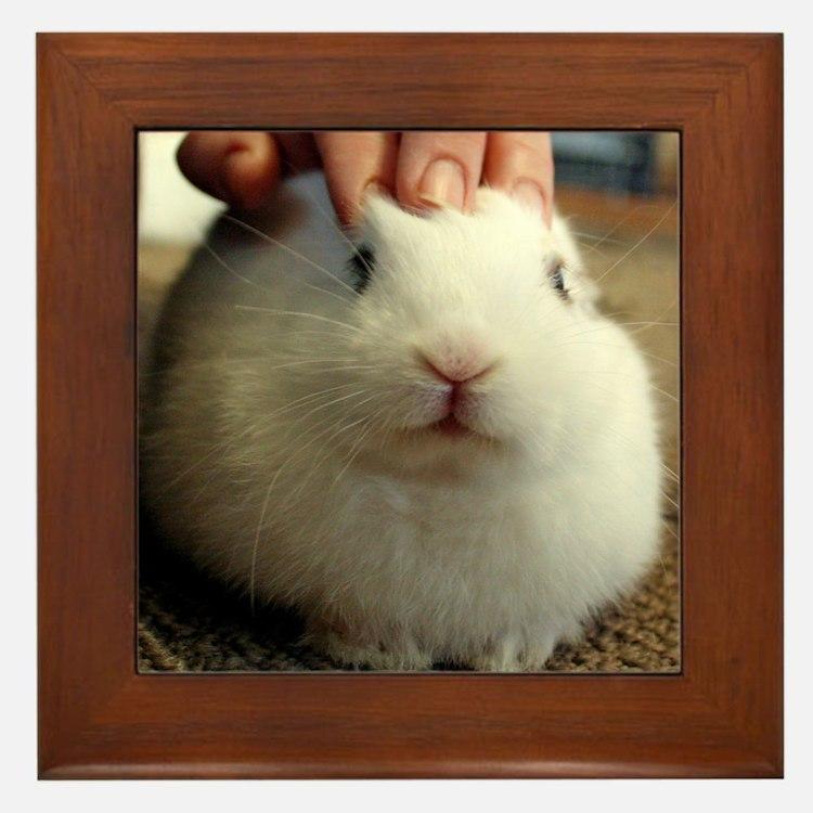 January - Bunny Bliss Framed Tile