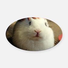 January - Bunny Bliss Oval Car Magnet