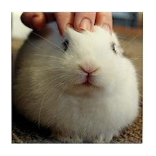 January - Bunny Bliss Tile Coaster
