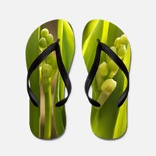 Lily of the valley (Convallaria majalis Flip Flops