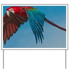 Green-winged Macaw Yard Sign