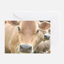 Jersey Cow Face Greeting Card
