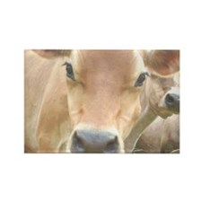 Jersey Cow Face Rectangle Magnet