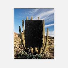 Organ pipe cactus (Stenocereus thurb Picture Frame