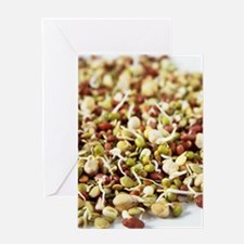 Sprouting beans Greeting Card