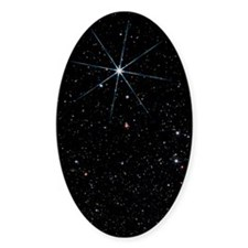 Star Vega in the constellation of L Decal