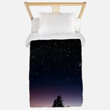 Starfield over a group of coastal trees Twin Duvet