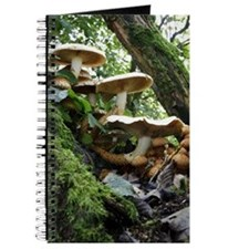 Shaggy pholiota fungi Journal