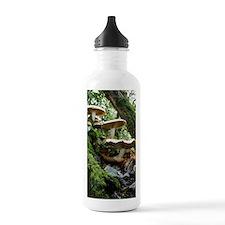 Shaggy pholiota fungi Water Bottle