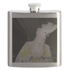 Ruths cockatoo Flask