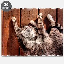 Lazy Summer Cat Puzzle