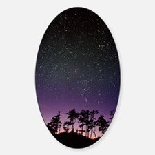 Starfield over trees Decal