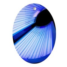 Sunbed Oval Ornament