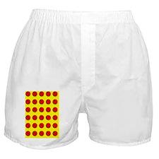 Tablets Boxer Shorts