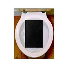 Toilet being flushed Picture Frame