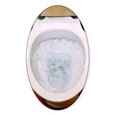 Toilet being flushed Decal