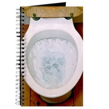 Toilet being flushed Journal
