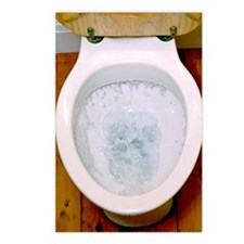 Toilet being flushed Postcards (Package of 8)