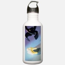Tooth extraction Water Bottle