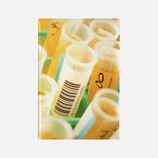 Urine samples Rectangle Magnet