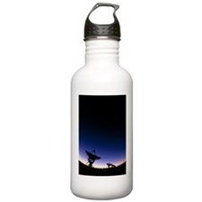 Very Large Array (VLA) Water Bottle