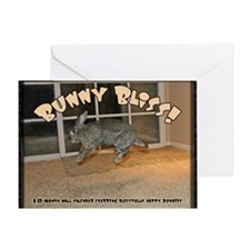 Cover - Bunny Bliss Greeting Card