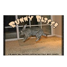 Cover - Bunny Bliss Postcards (Package of 8)