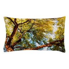 mesquite tree Pillow Case