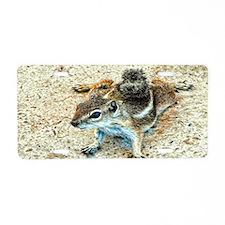 ground squirrel Aluminum License Plate