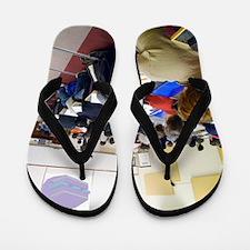University lecture Flip Flops