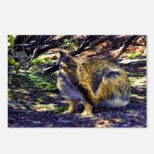 cottontail bunny Postcards (Package of 8)