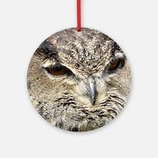 Eurasian Eagle Owl Round Ornament