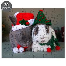 BelleWinston Puzzle