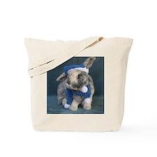 HobbesOrnament1 Tote Bag