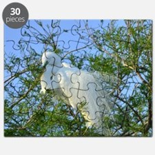 Great Egret Puzzle