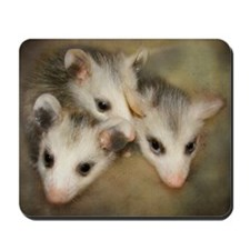 Possum BSnuttles Mousepad