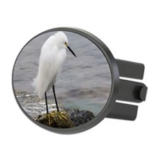 Snowy Egret Hitch Cover