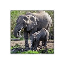 "African elephants Square Sticker 3"" x 3"""