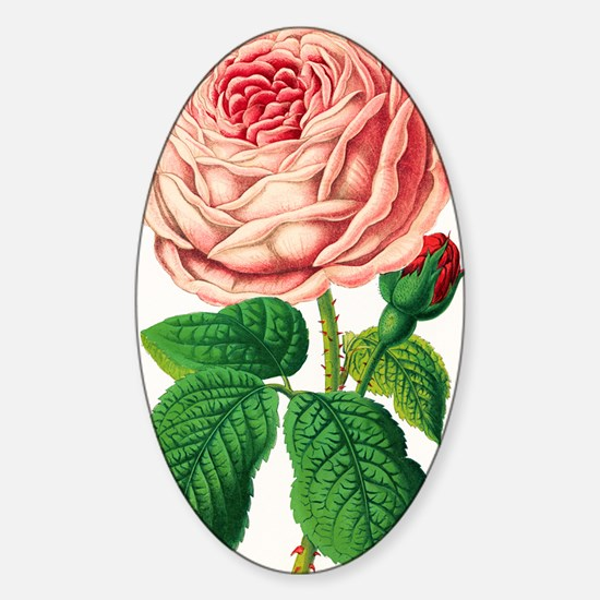 Rose Sticker (Oval)