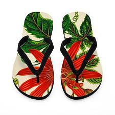 Passion flower Flip Flops