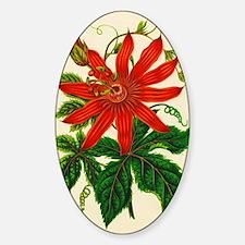 Passion flower Sticker (Oval)