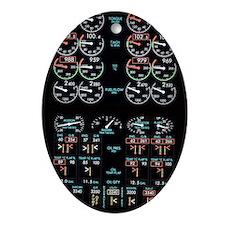 Aeroplane control panel display Oval Ornament