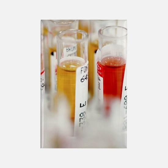 Blood samples Rectangle Magnet