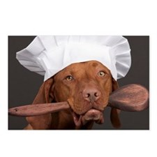 vizsla chef Postcards (Package of 8)