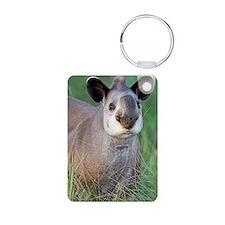 Brazilian tapir Keychains